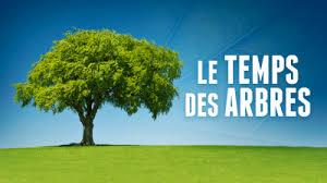 «Le Temps des Arbres» réalisé par Marie France BARRIER
